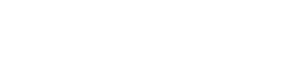 Impresa Sacchetti Logo